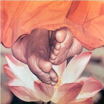 lotus-feet.jpg